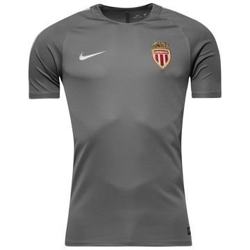 AS Monaco Treenipaita Dry Top Squad Harmaa