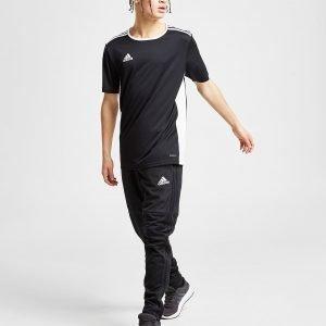 Adidas Condivo 18 Track Pants Musta