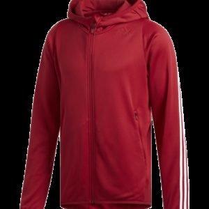 Adidas Daily 3s Hoodie Treenipaita