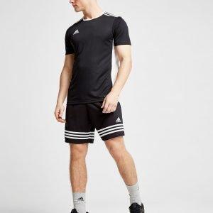 Adidas Entrada 18 T-Shirt Musta