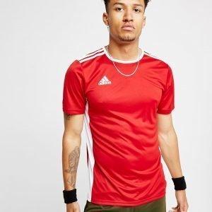 Adidas Entrada 18 T-Shirt Punainen