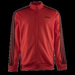 Adidas Essentials 3s Tt Tric Verryttelypusero
