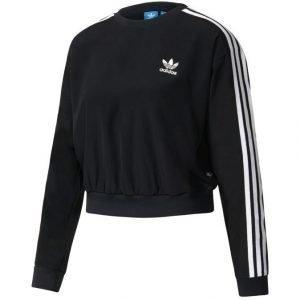 Adidas Originals 3 Stripes Cropped Collegepaita
