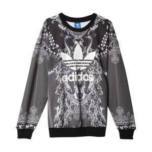 Adidas Originals Pavao Collegepaita