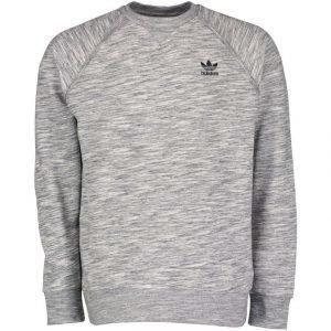 Adidas Originals Premium Trefoil Collegepaita