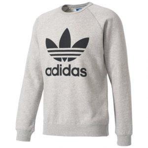 Adidas Originals Trefoil Collegepaita