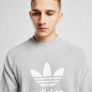 Adidas Originals Trefoil Crew Collegepaita Harmaa