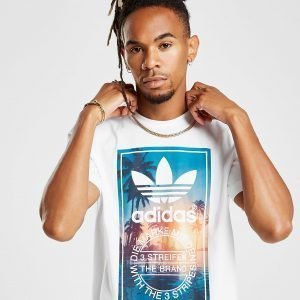 Adidas Originals Trefoil Photo Palm T-Shirt Valkoinen