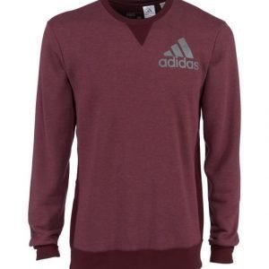 Adidas Performance Prime Collegepaita