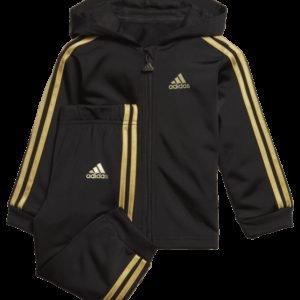Adidas Shiny Fz Hd Set Treenisetti