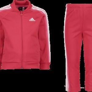 Adidas Shiny Ts Set Verryttelyasu