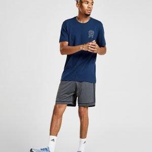 Adidas Squad Shorts Harmaa
