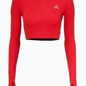 Adidas Tf Crop Top Treenipusero