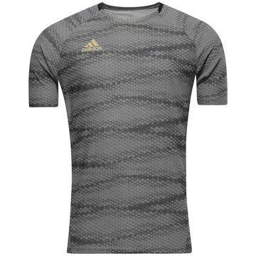 Adidas Treenipaita UFB Snake Harmaa