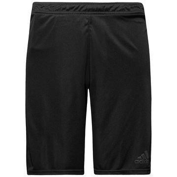 Adidas Treenishortsit UFB Musta/Harmaa