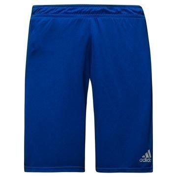 Adidas Treenishortsit UFB Sininen/Punainen