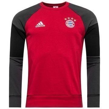 Bayern München Collegepaita Punainen