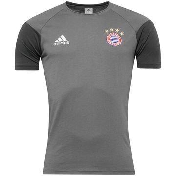 Bayern München T-Paita Harmaa