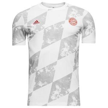 Bayern München T-paita Valkoinen/Harmaa Lapset
