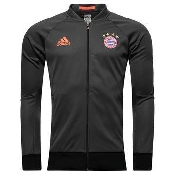Bayern München Takki Anthem Harmaa