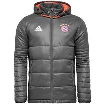 Bayern München Toppatakki Harmaa