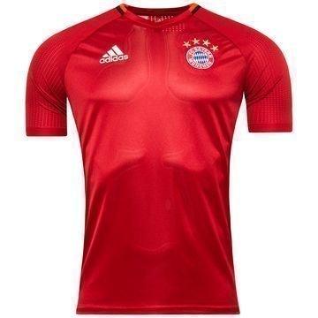 Bayern München Treenipaita Punainen