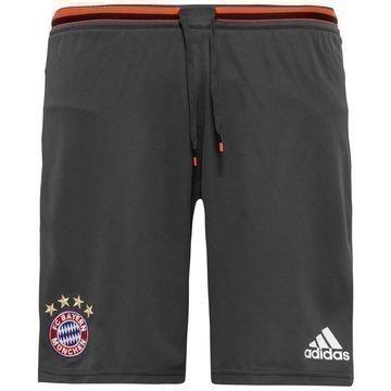 Bayern München Treenishortsit Harmaa