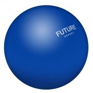 Future Tt Sport Kuntopallo 5kg Pieni Sininen