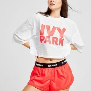 Ivy Park Tape Run Shortsit Vaaleanpunainen