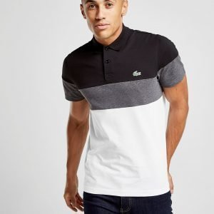 Lacoste Tri Colour Block Polo Musta