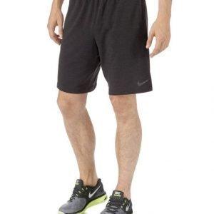 Nike Dry Fleece Treenishortsit