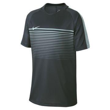 Nike Treenipaita Dry Top Squad Vihreä Lapset