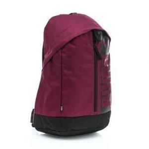 Pioneer Backpack II