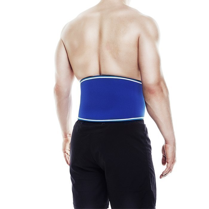 Rehband Blue Line Back Support L