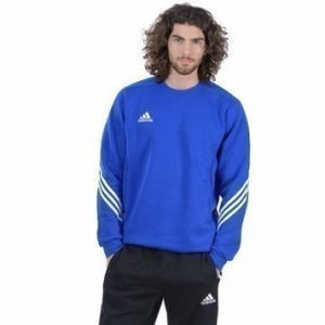 Sereno 14 Sweat Suit