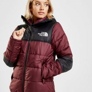 The North Face Panel Padded Takki Punainen