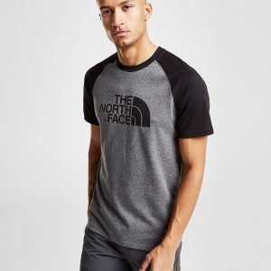 The North Face Raglan T-Paita Harmaa