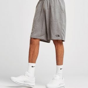The North Face Reactor Poly Shorts Harmaa