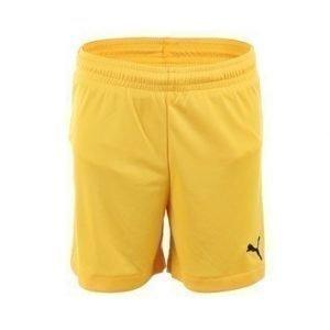 Velize Shorts